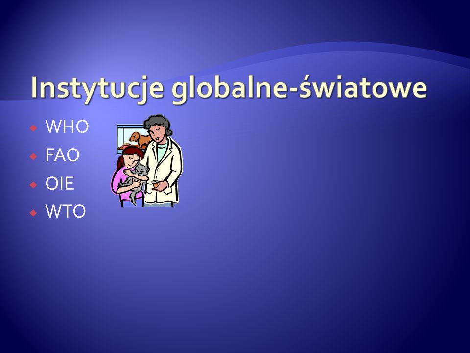 Instytucje globalne-światowe