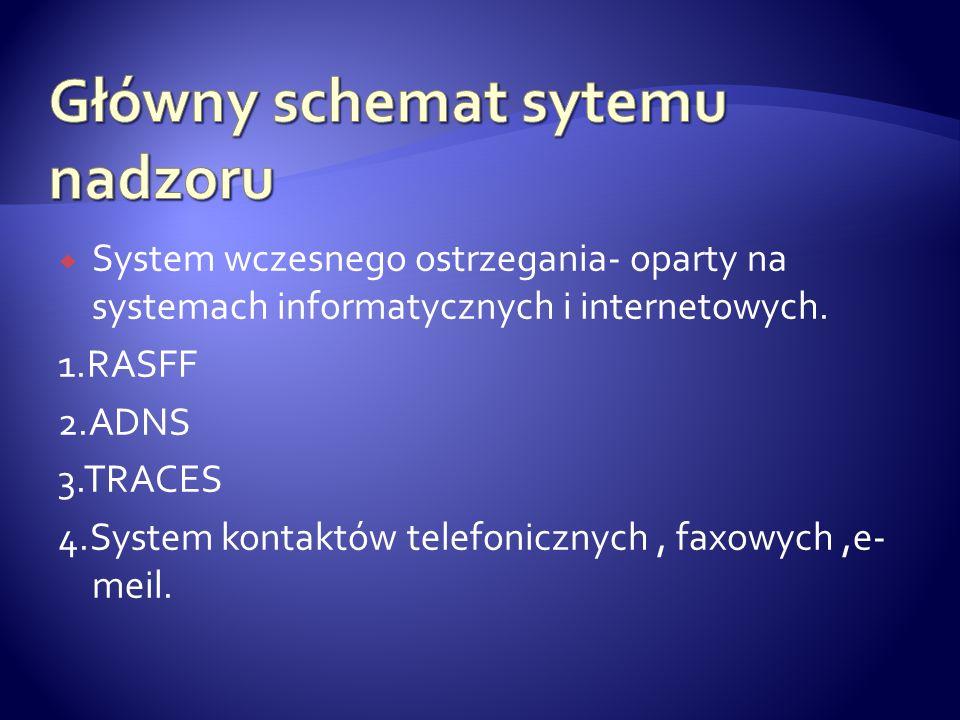 Główny schemat sytemu nadzoru