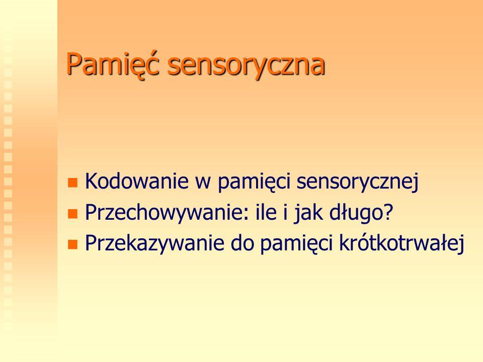Pamięć sensoryczna Kodowanie w pamięci sensorycznej