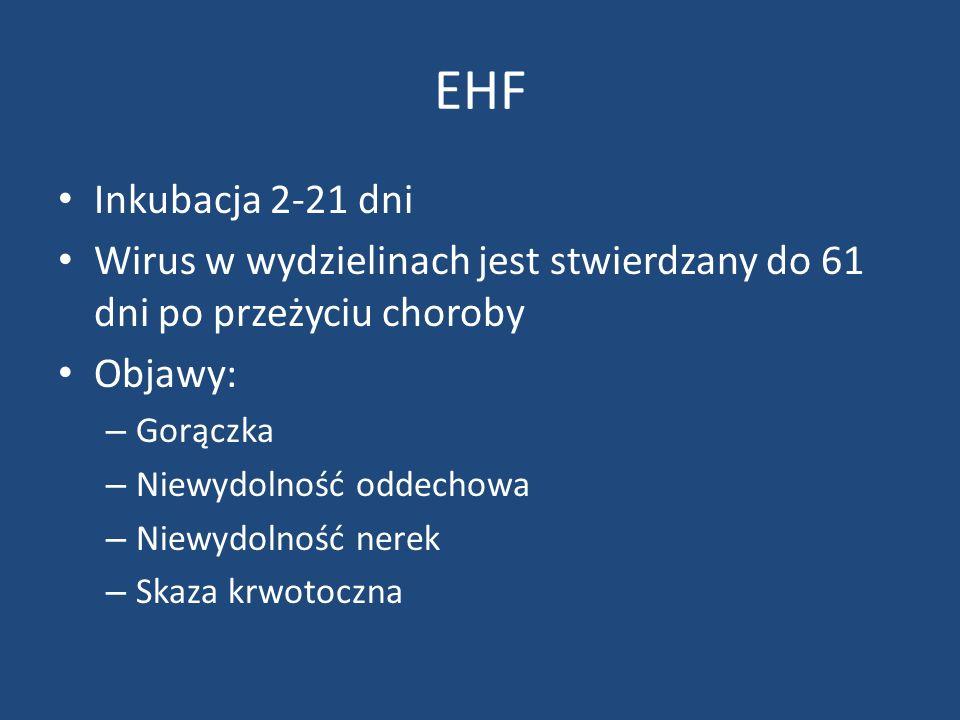 EHF Inkubacja 2-21 dni. Wirus w wydzielinach jest stwierdzany do 61 dni po przeżyciu choroby. Objawy: