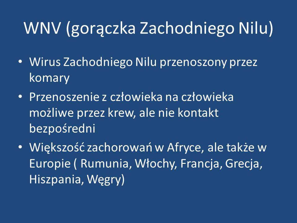 WNV (gorączka Zachodniego Nilu)