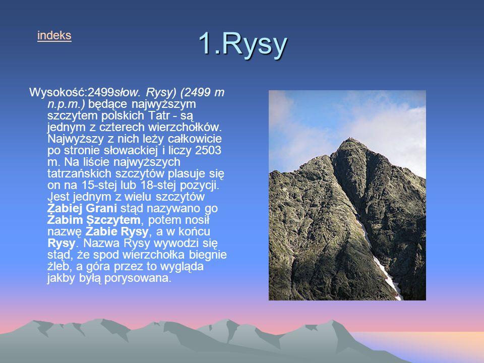 1.Rysy indeks.