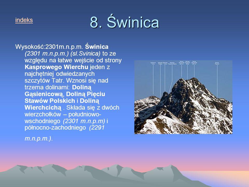 8. Świnica indeks.