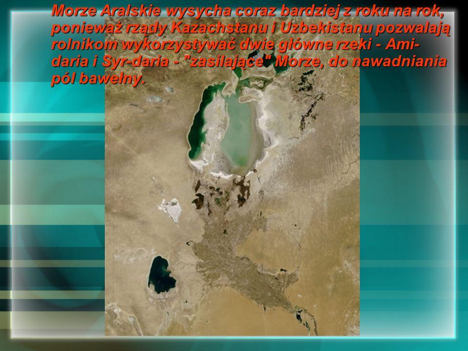 Morze Aralskie wysycha coraz bardziej z roku na rok, ponieważ rządy Kazachstanu i Uzbekistanu pozwalają rolnikom wykorzystywać dwie główne rzeki - Ami-daria i Syr-daria - zasilające Morze, do nawadniania pól bawełny.