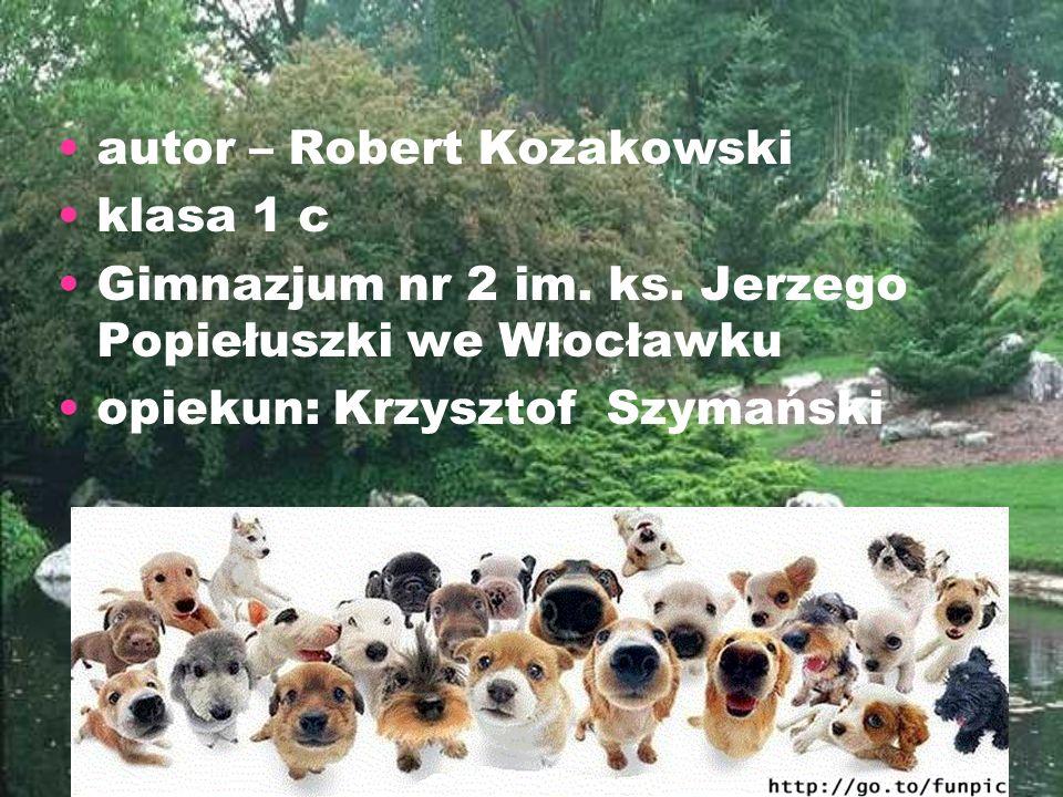 autor – Robert Kozakowski