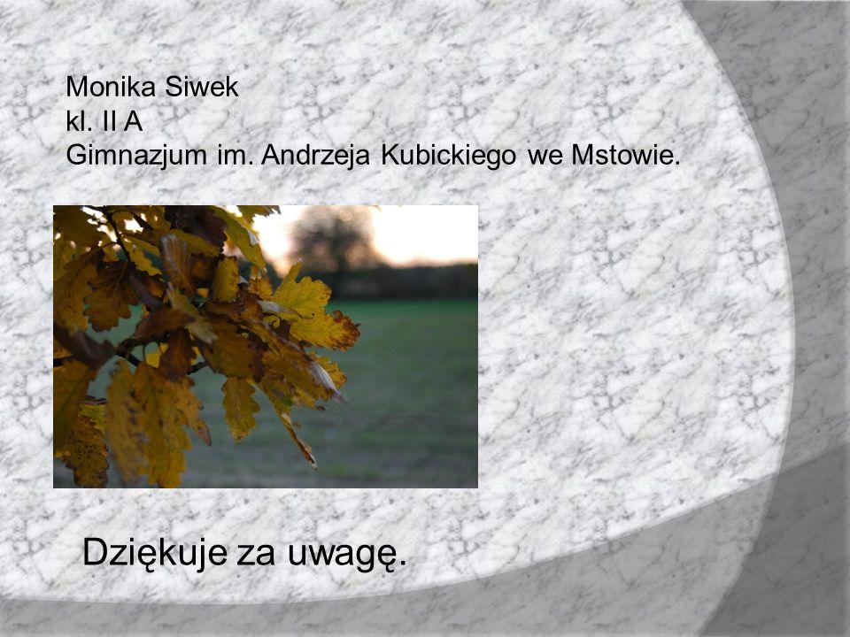 Dziękuje za uwagę. Monika Siwek kl. II A