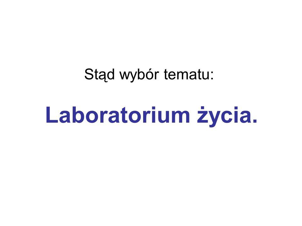 Stąd wybór tematu: Laboratorium życia.