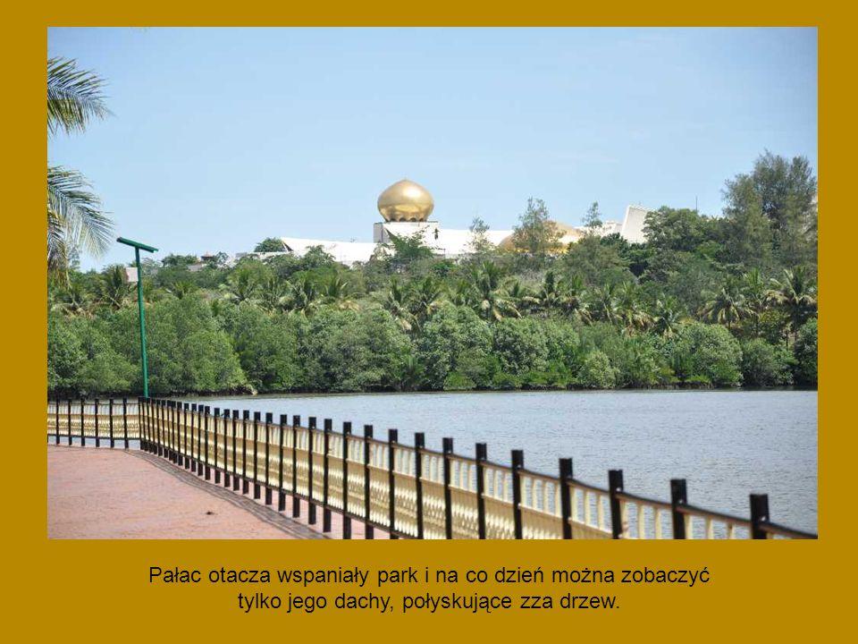 Pałac otacza wspaniały park i na co dzień można zobaczyć