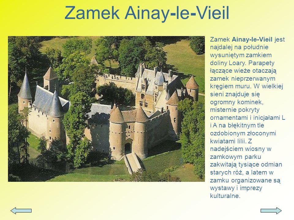 Zamek Ainay-le-Vieil