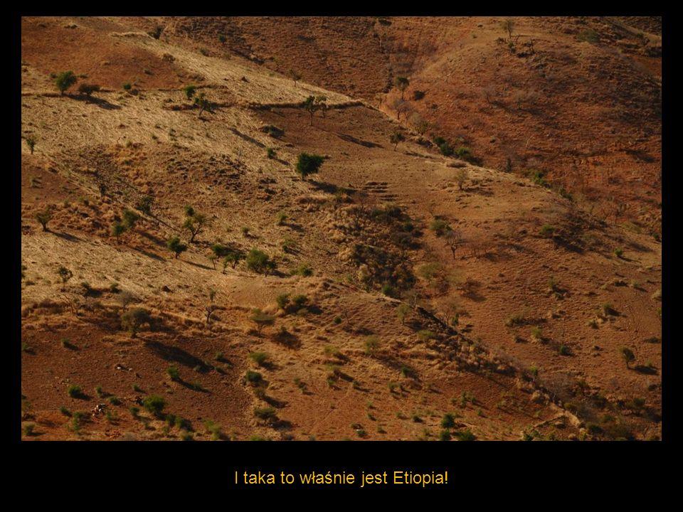 I taka to właśnie jest Etiopia!
