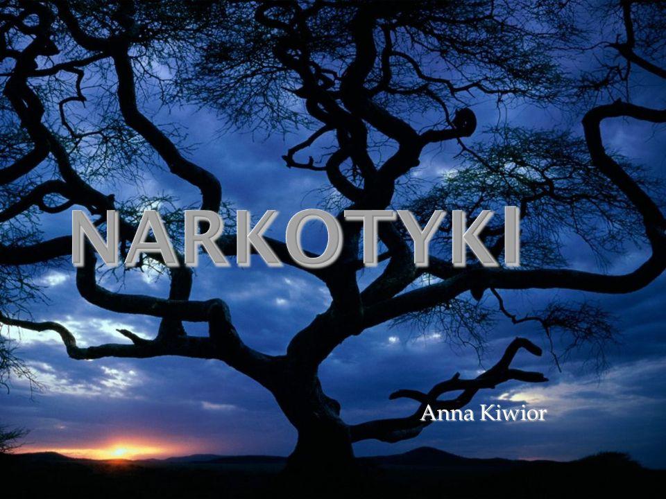 Narkotyki Anna Kiwior