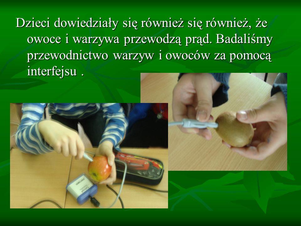 Dzieci dowiedziały się również się również, że owoce i warzywa przewodzą prąd.