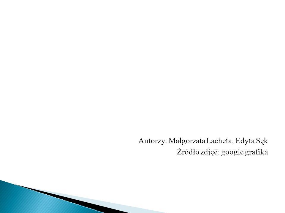 Autorzy: Małgorzata Lacheta, Edyta Sęk