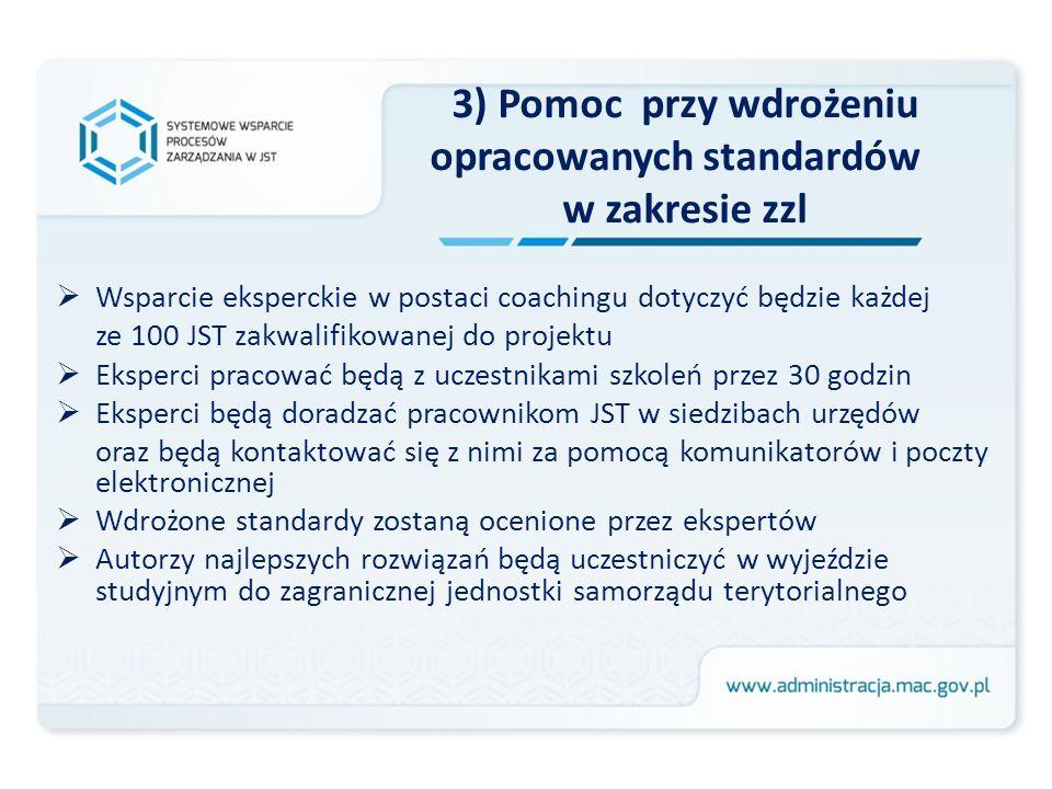 3) Pomoc przy wdrożeniu opracowanych standardów