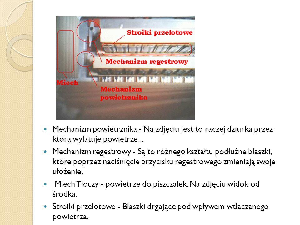Mechanizm powietrznika - Na zdjęciu jest to raczej dziurka przez którą wylatuje powietrze...
