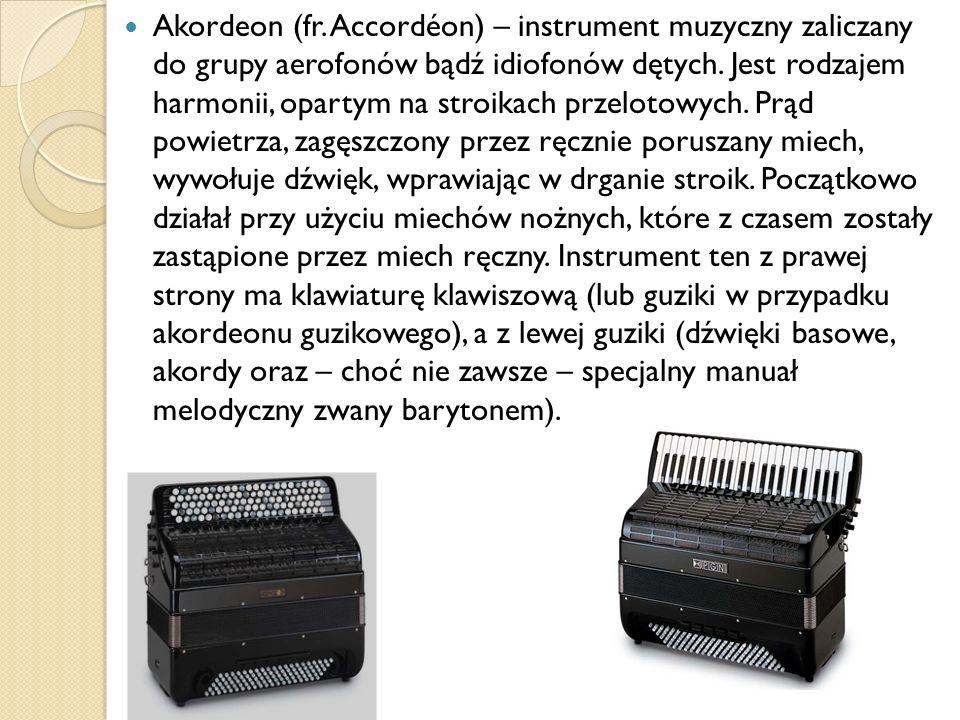 Akordeon (fr. Accordéon) – instrument muzyczny zaliczany do grupy aerofonów bądź idiofonów dętych.