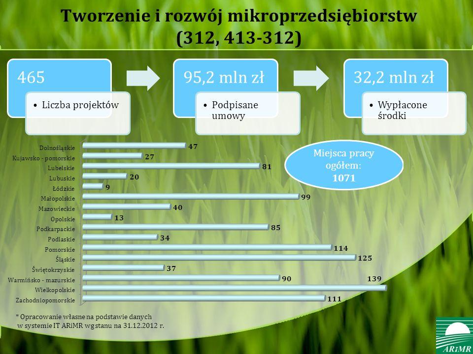 Tworzenie i rozwój mikroprzedsiębiorstw (312, 413-312)