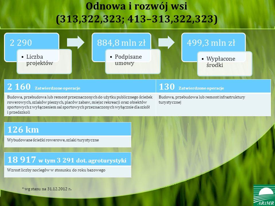 Odnowa i rozwój wsi (313,322,323; 413–313,322,323)