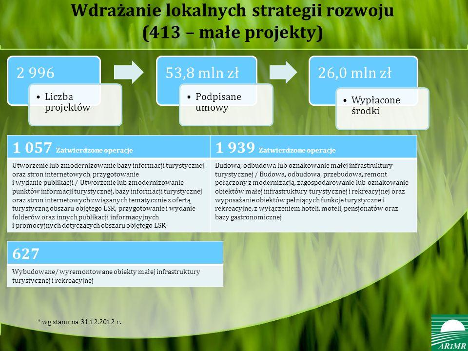 Wdrażanie lokalnych strategii rozwoju (413 – małe projekty)