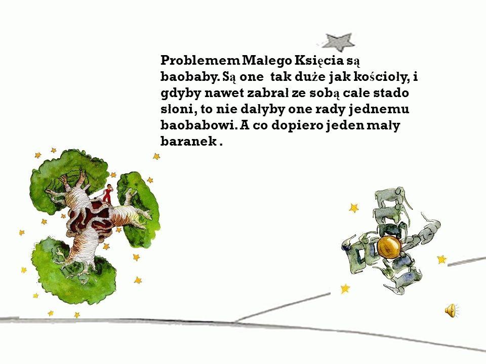 Problemem Małego Księcia są baobaby