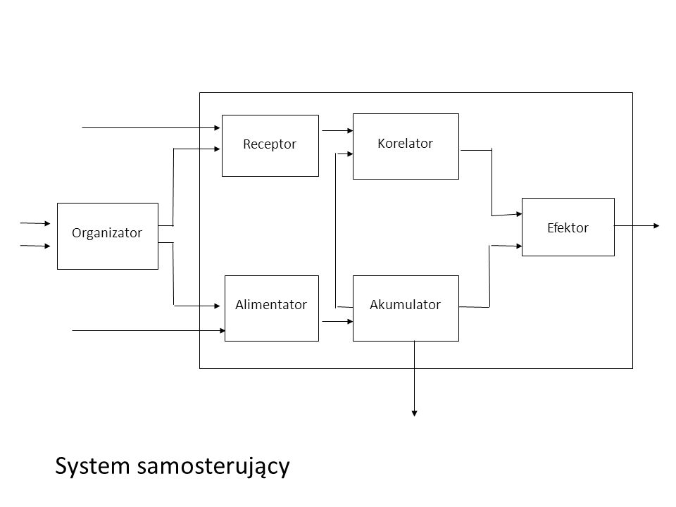 System samosterujący E0- energy dispersion Self-controllable system