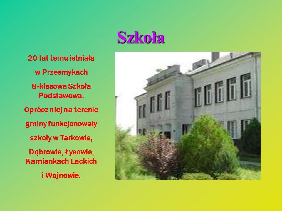 8-klasowa Szkoła Podstawowa. Dąbrowie, Łysowie, Kamiankach Lackich