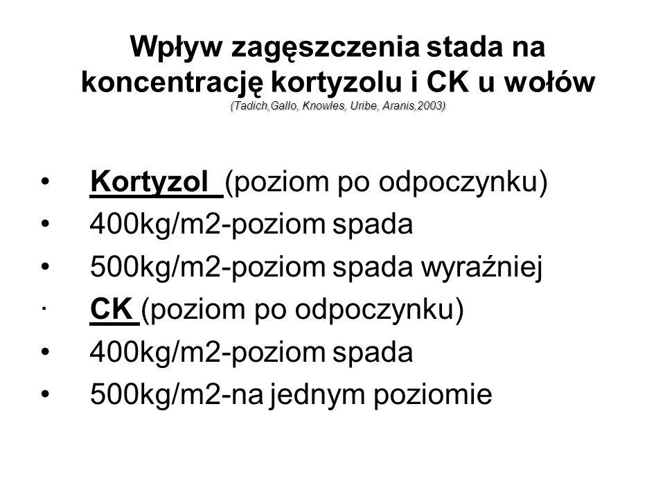 Wpływ zagęszczenia stada na koncentrację kortyzolu i CK u wołów (Tadich,Gallo, Knowles, Uribe, Aranis,2003)