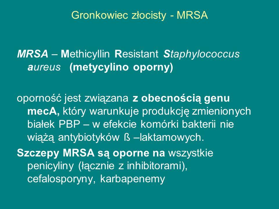 Gronkowiec złocisty - MRSA