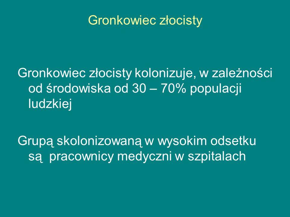 Gronkowiec złocisty Gronkowiec złocisty kolonizuje, w zależności od środowiska od 30 – 70% populacji ludzkiej.