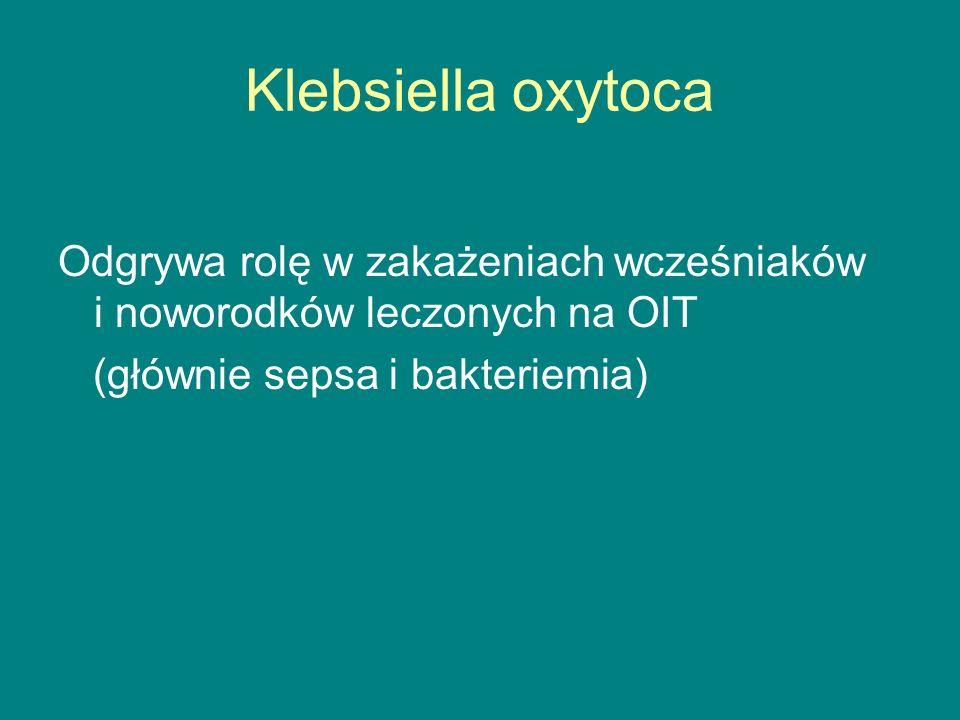 Klebsiella oxytoca Odgrywa rolę w zakażeniach wcześniaków i noworodków leczonych na OIT.