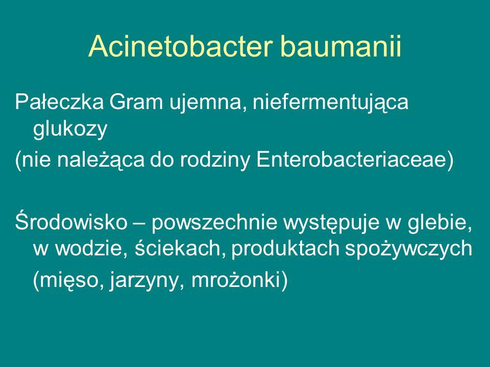 Acinetobacter baumanii