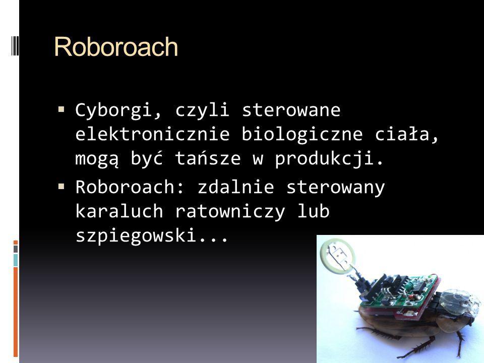 Roboroach Cyborgi, czyli sterowane elektronicznie biologiczne ciała, mogą być tańsze w produkcji.