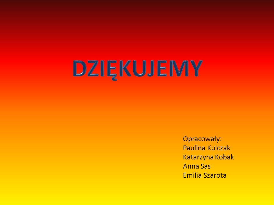DZIĘKUJEMY Opracowały: Paulina Kulczak Katarzyna Kobak Anna Sas