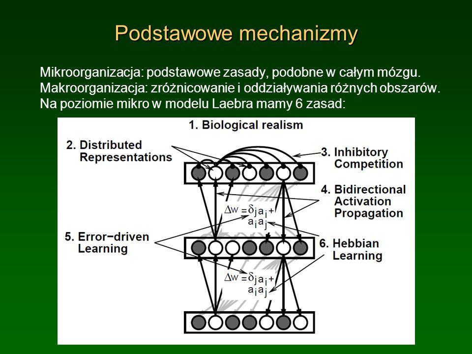 Podstawowe mechanizmy
