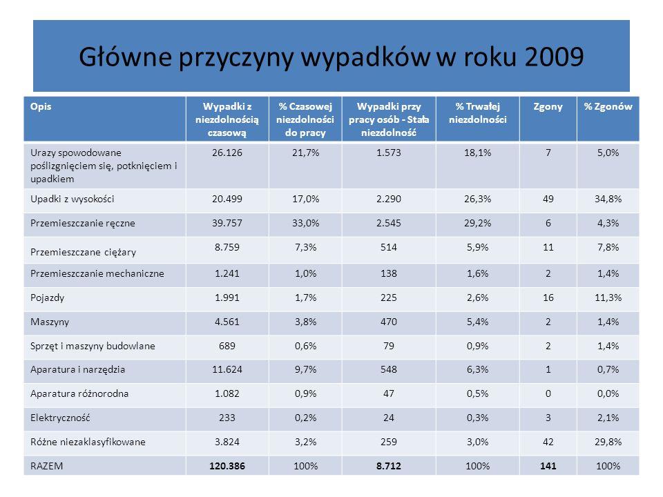 Główne przyczyny wypadków w roku 2009