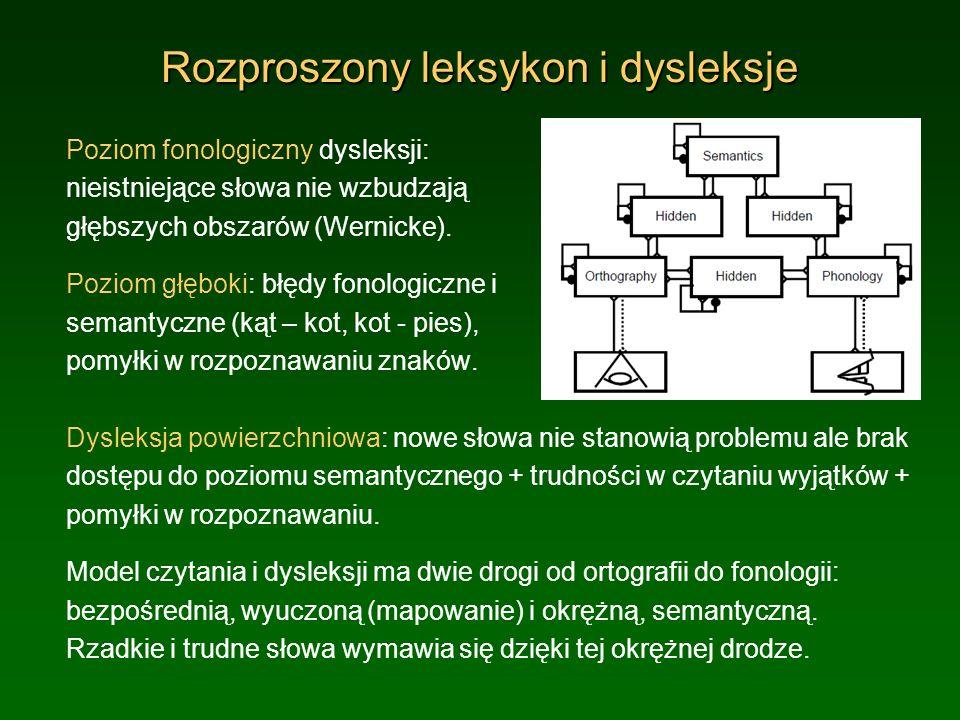 Rozproszony leksykon i dysleksje