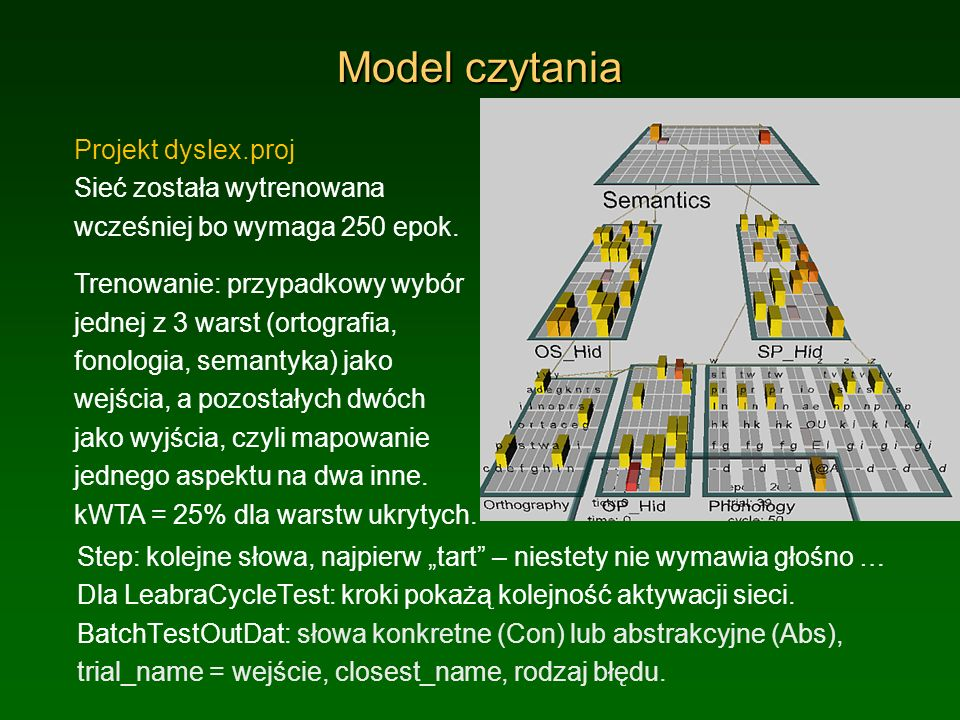 Model czytania Projekt dyslex.proj