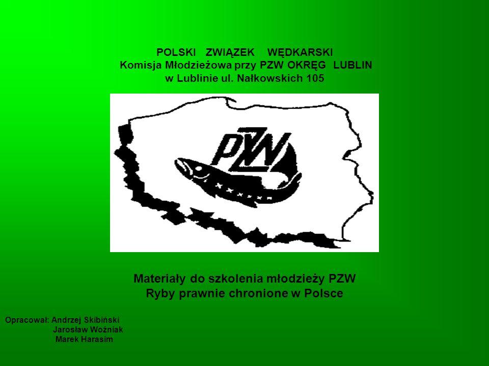Materiały do szkolenia młodzieży PZW Ryby prawnie chronione w Polsce