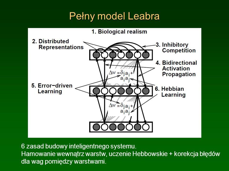 Pełny model Leabra
