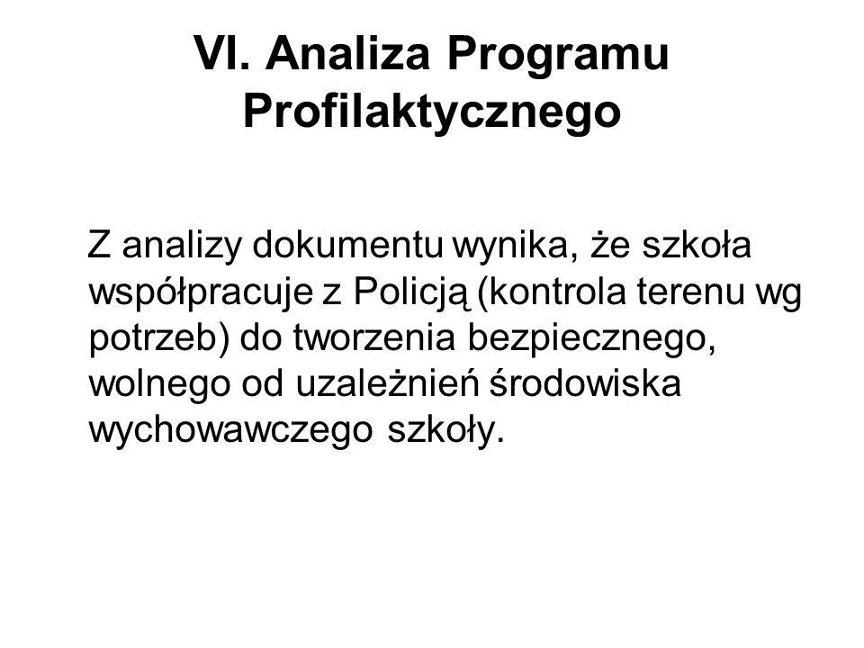 VI. Analiza Programu Profilaktycznego