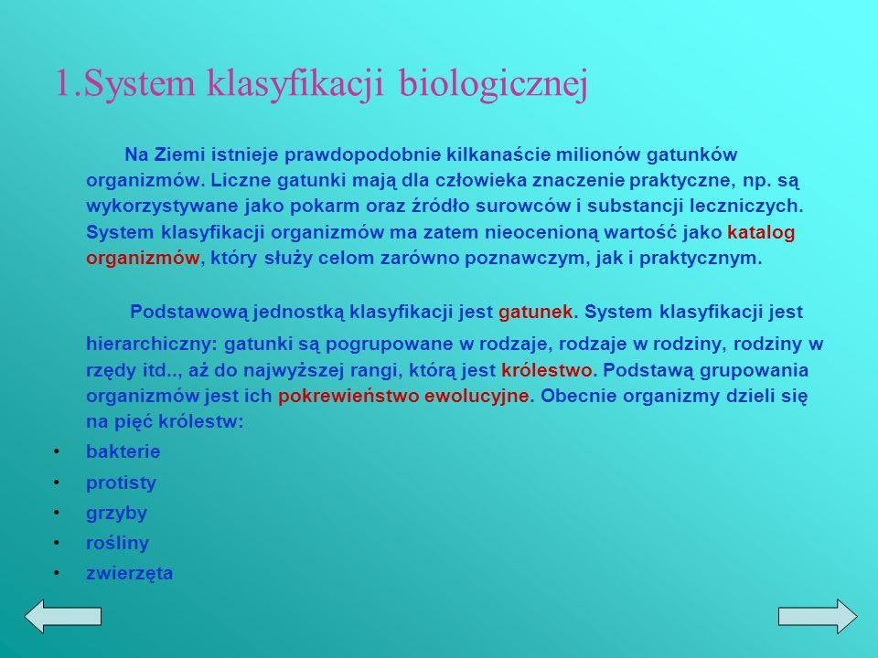 1.System klasyfikacji biologicznej