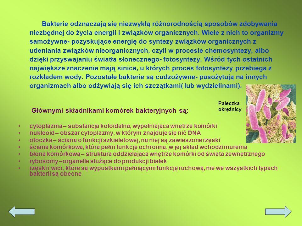 Głównymi składnikami komórek bakteryjnych są: