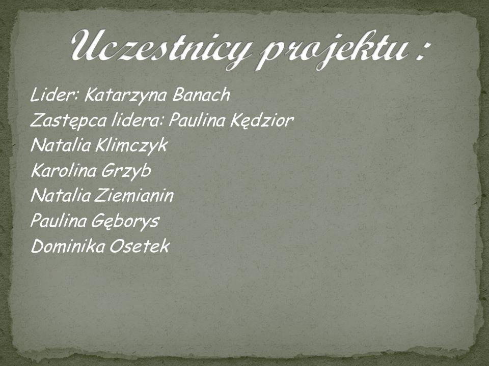 Uczestnicy projektu :