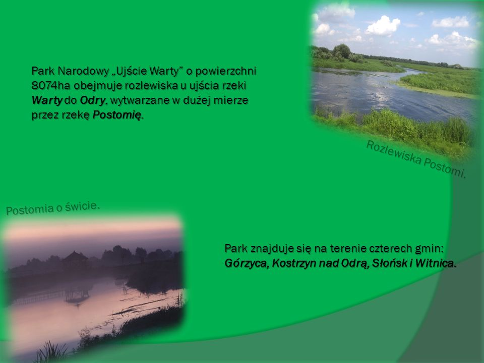 """Park Narodowy """"Ujście Warty o powierzchni 8074ha obejmuje rozlewiska u ujścia rzeki Warty do Odry, wytwarzane w dużej mierze przez rzekę Postomię."""