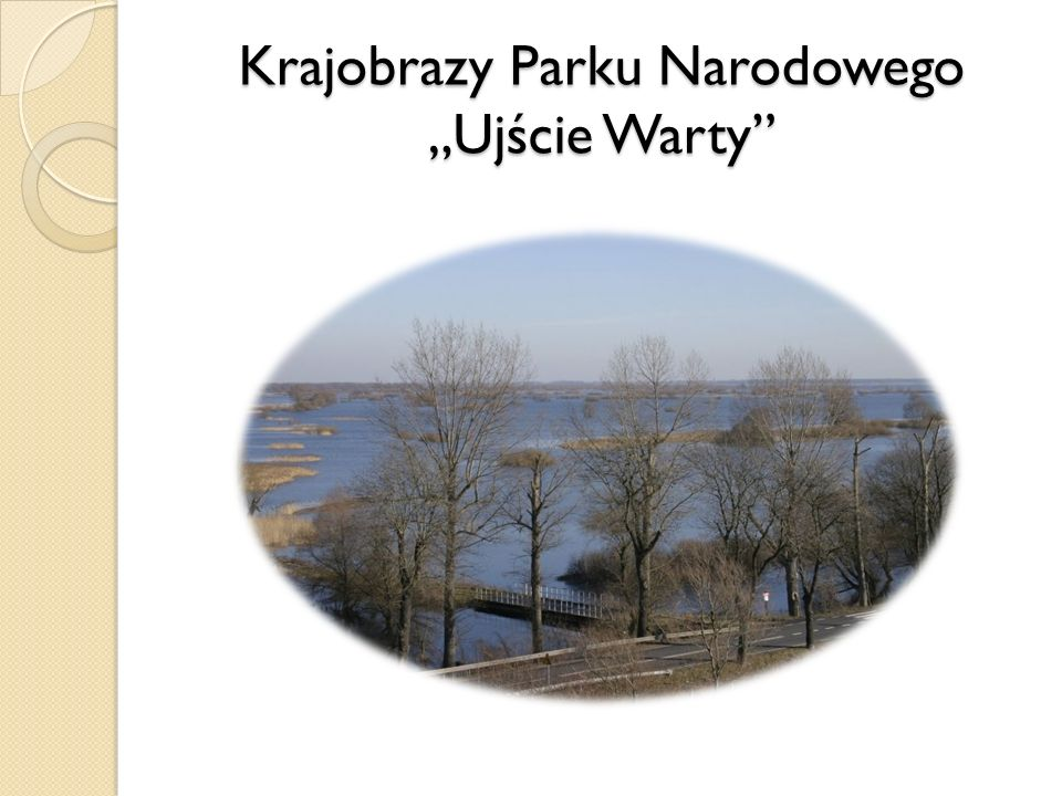 """Krajobrazy Parku Narodowego """"Ujście Warty"""