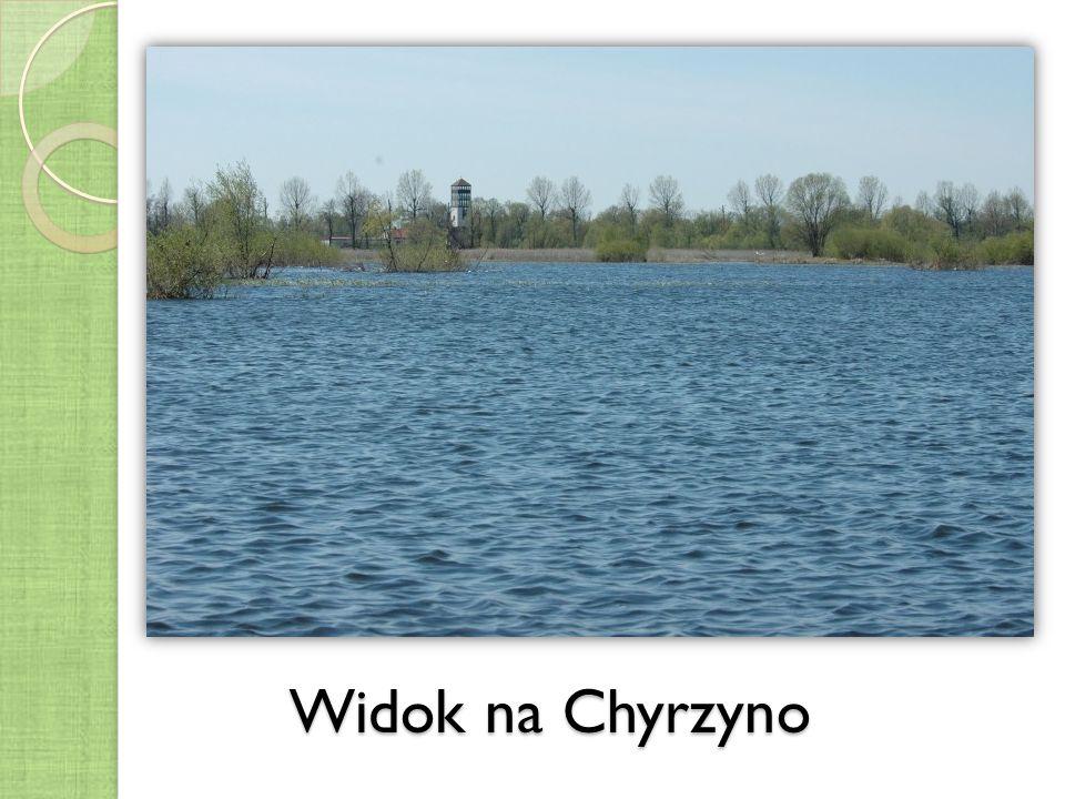 Widok na Chyrzyno