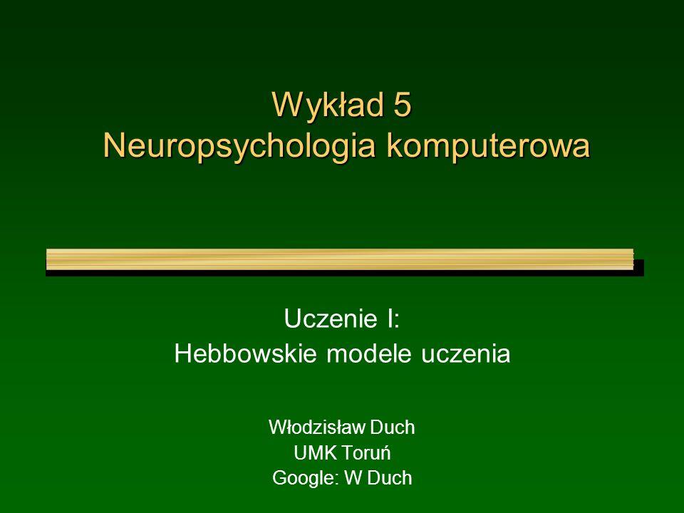Wykład 5 Neuropsychologia komputerowa