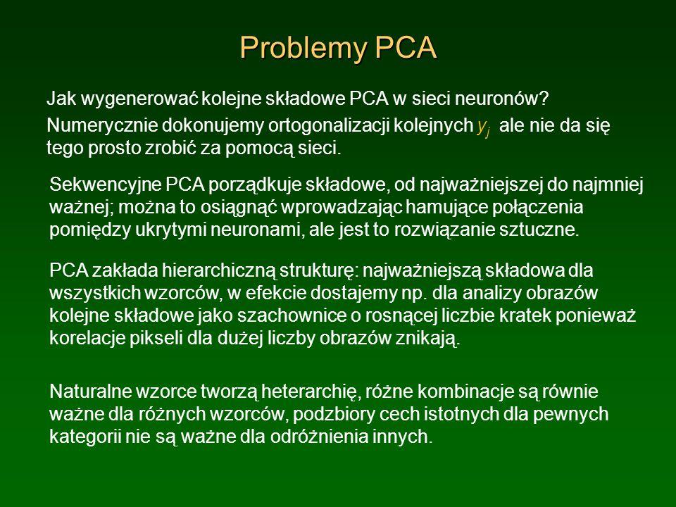 Problemy PCA Jak wygenerować kolejne składowe PCA w sieci neuronów