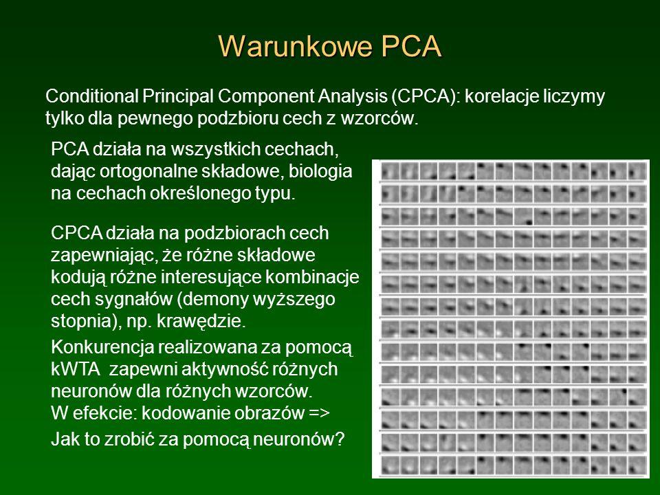 Warunkowe PCA Conditional Principal Component Analysis (CPCA): korelacje liczymy tylko dla pewnego podzbioru cech z wzorców.