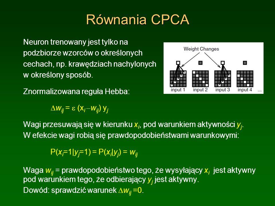Równania CPCA Neuron trenowany jest tylko na